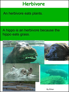 sample of one student's herbivore definition