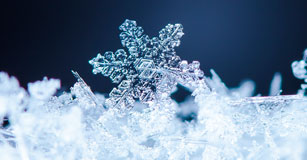 Image of a snowflake crystal