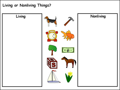 example of template for a living or nonliving sort