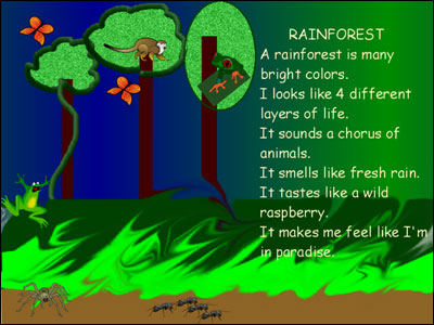 5 senses poem about rainforest
